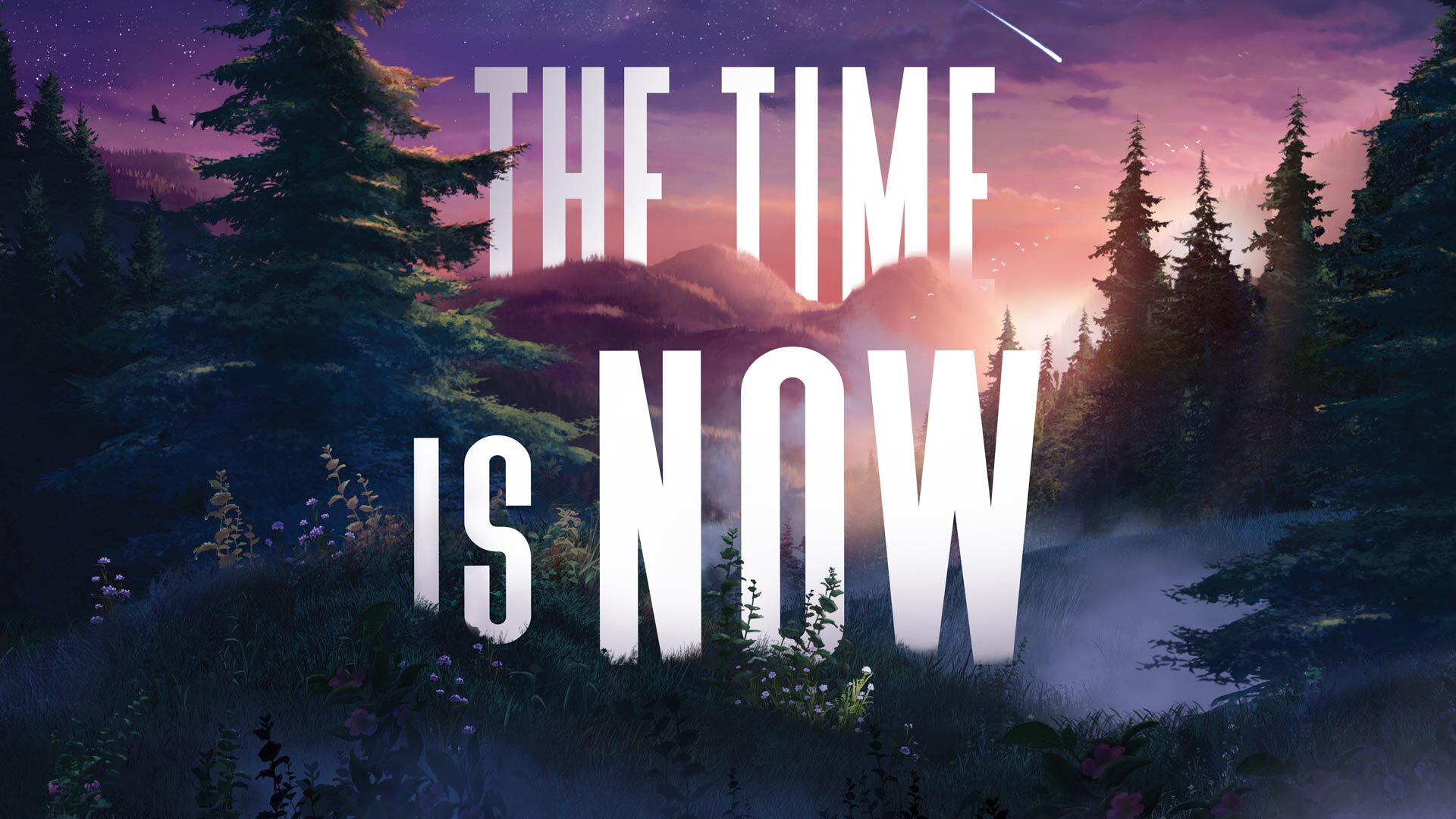 The Time Is Now - Lisa Peterson